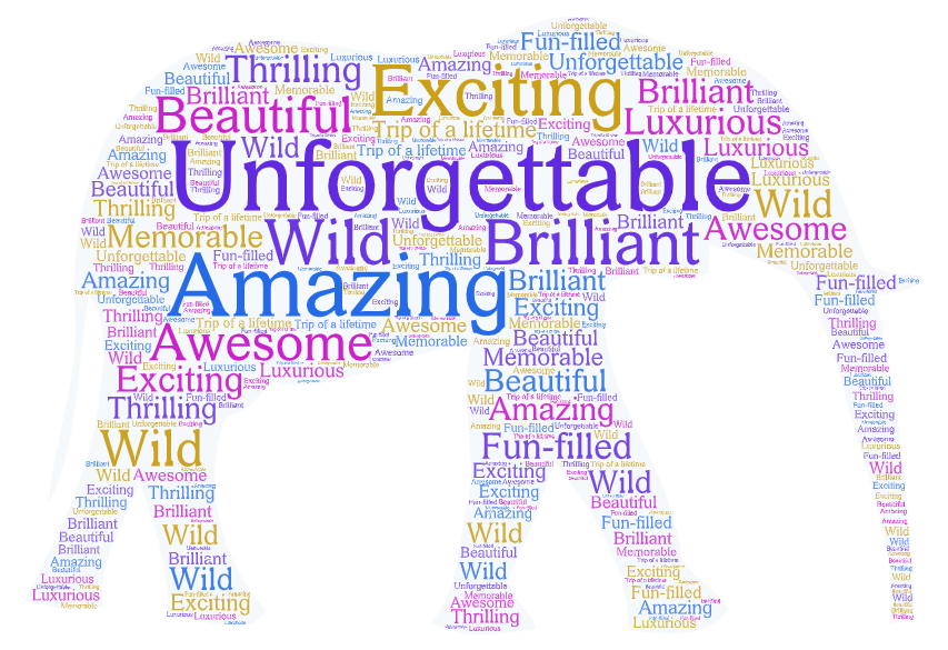 word art with words to describe a safari - from unforgettable to amazing