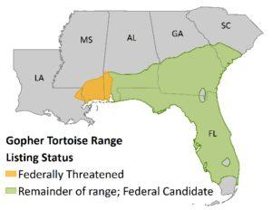 Gopher Tortoise Range