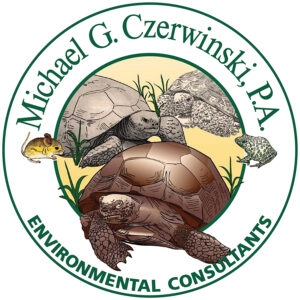 Environment consulting