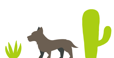 Resources for Pet Owners | Pet Wellness & Veterinary Clinic in Yuma | Palo Verde Pet Clinic