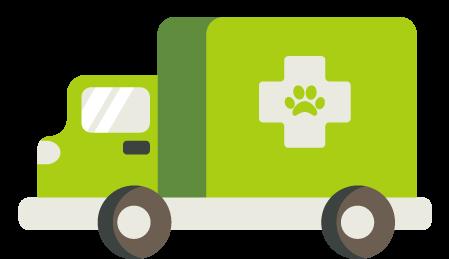 emergency vet care - Palo Verde Pet Clinic - Veterinary Clinic in Yuma, AZ