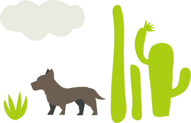 Tips for Dog Owners in Arizona | Top Veterinary Clinic in Yuma, Arizona - Palo Verde Pet Clinic