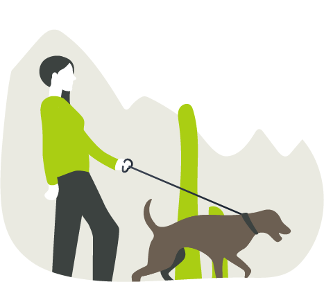 dogs and hiking safety - Palo Verde Pet Clinic - Veterinary Clinic in Yuma, AZ