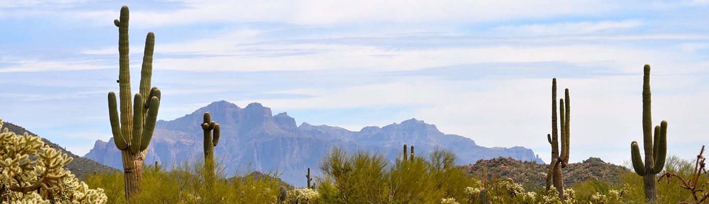 Rio Salado panoramic desert and superstiions