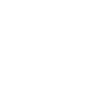 The River City Group