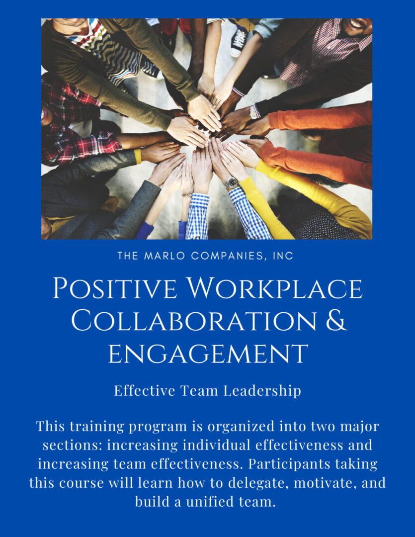 PWCE- Effective Team Leadership-1