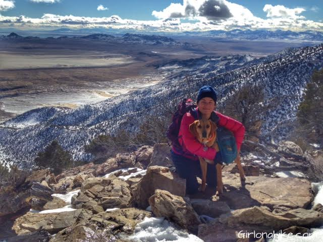 Pilot Peak, Pilot Peak hiking guide, Nevada Peaks