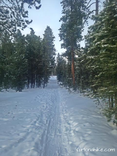 The Norway Flats Yurt trail, TUNA Yurt, Yurts of Utah