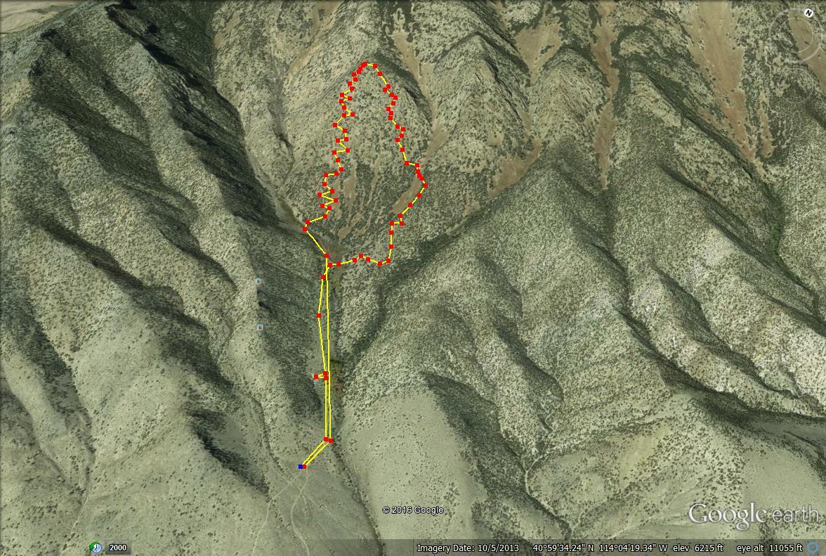 Pilot Peak, Pilot Peak hiking guide, Pilot Peak map