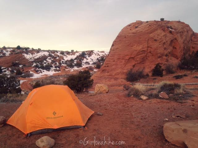 Sand Flats Recreation Area, Camping with dogs in Moab