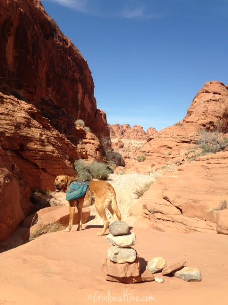 Valley of Fire State Park, Nevada State Parks, Prospect Trail