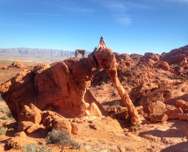 Valley of Fire State Park, Nevada State Parks, Elephant Rock