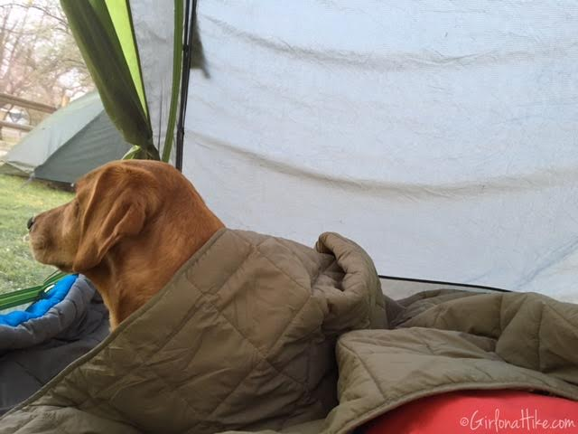 Hiking and Camping at Cathedral Gorge State Park, Dutch Oven Lasagna