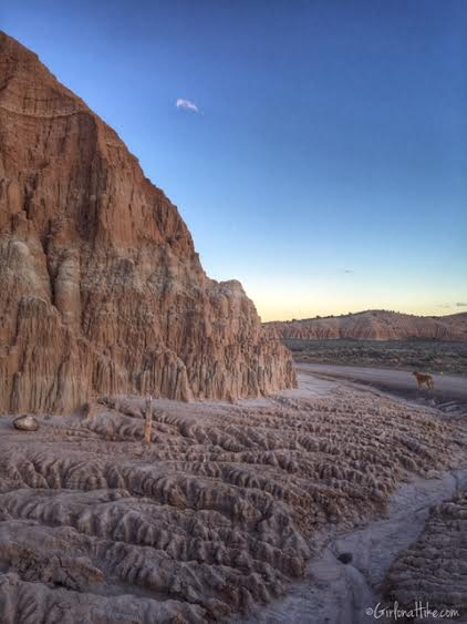 Hiking and Camping at Cathedral Gorge State Park, Canyon Caves