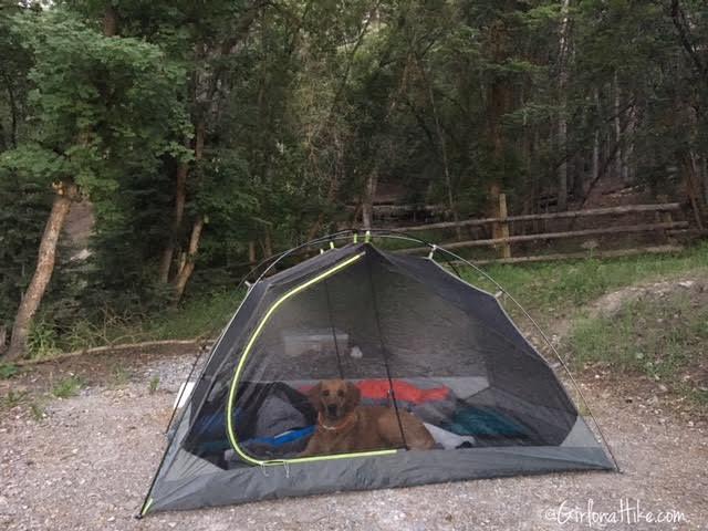 Hiking Santaquin Peak, Maple Bench Campground