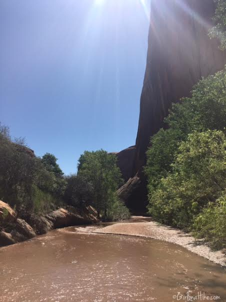 Backpacking Coyote Gulch, Utah