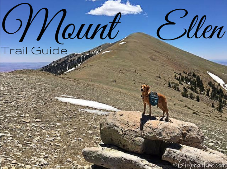 Hiking Mount Ellen & Mt. Ellen Peak