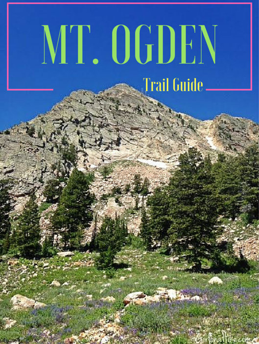 Hiking Mount Ogden, Snowbasin Ski Resort, Utah