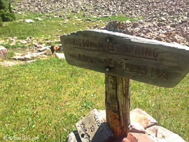 Backpacking to Rock Creek Basin, High Uintas, Pigeon Milk Springs