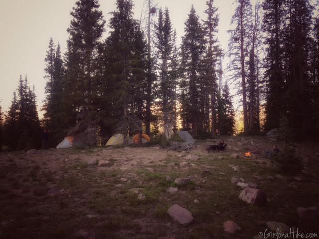 How to Camp for FREE In Utah! Rock Creek Basin, Uintas