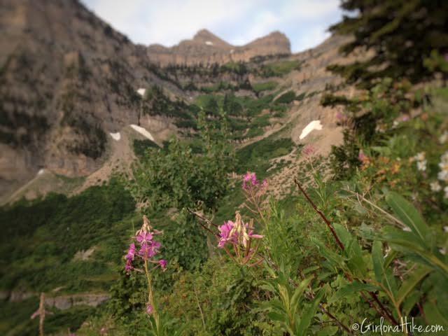 Hiking Mt. Timpanogos via Aspen Grove, Primrose Cirque