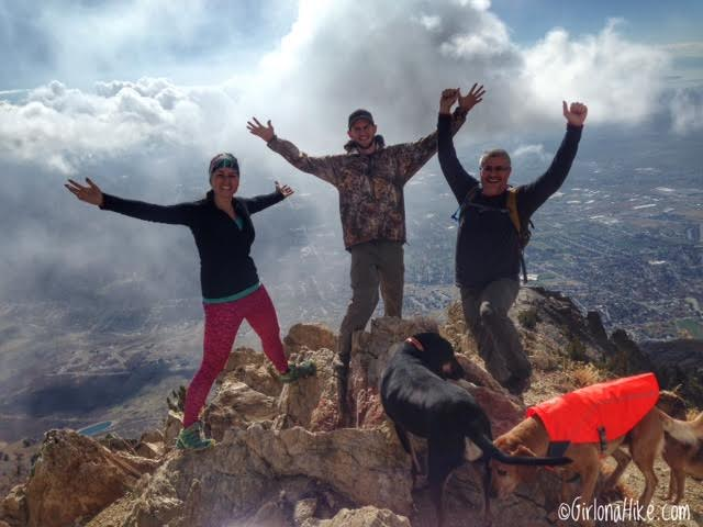 Hiking to Willard Peak & Ben Lomond Peak, Hiking in Utah with Dogs