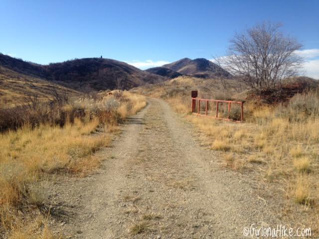 Hiking the Emigration Canyon Ridge, Emigration Canyon, Hiking Perkins Peak, Salt Lake City, UT, Hiking in Utah with Dogs