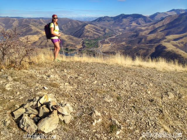 Hiking the Emigration Canyon Ridge, Emigration Canyon, Hiking Dale Peak, Salt Lake City, UT, Hiking in Utah with Dogs