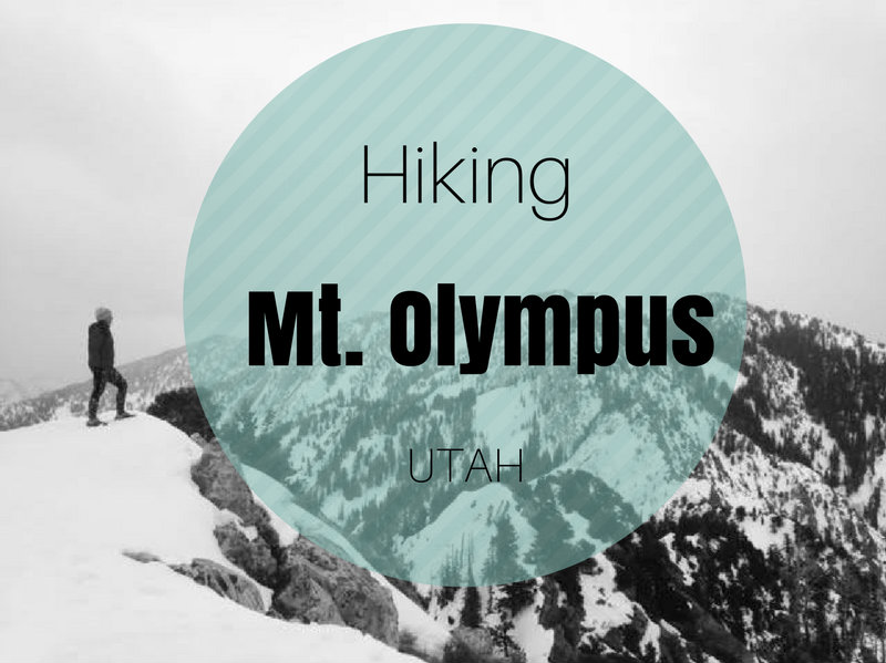 Hiking Mt. Olympus, Hiking in Utah with Dogs, Utah peak bagging