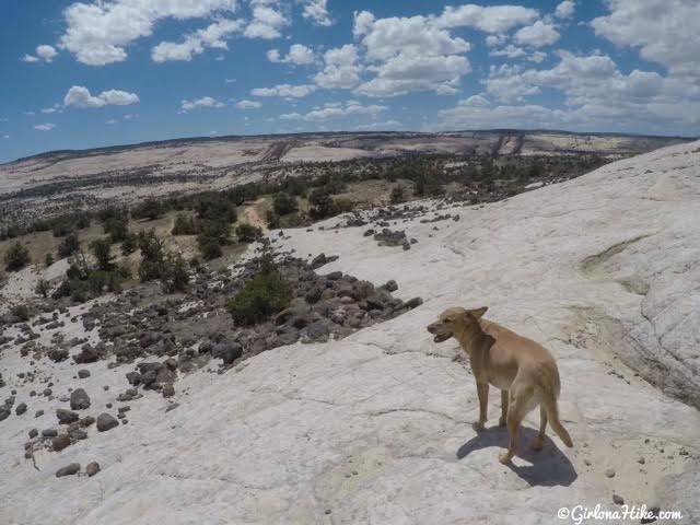 Hiking to Upper Calf Creek Falls, Escalante, Utah