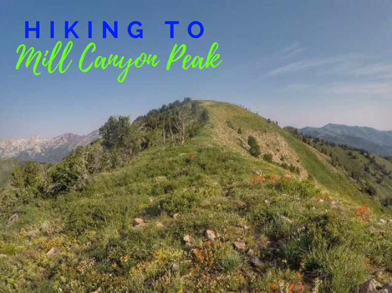 Hiking to Mill Canyon Peak, American Fork Canyon