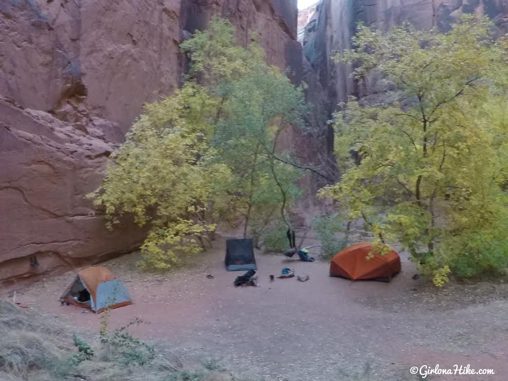 Backpacking Buckskin Gulch - Wire Pass to White House, Backpacking Buckskin Gulch with Dogs