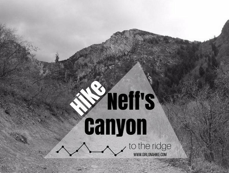 Hiking Neff's Canyon to the Ridge
