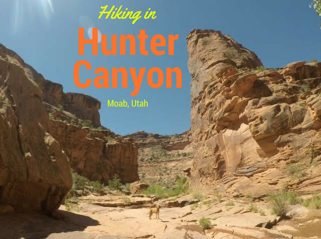 Hiking Hunter Canyon, Moab, Hiking in Moab with Dogs, Hiking in Utah with Dogs