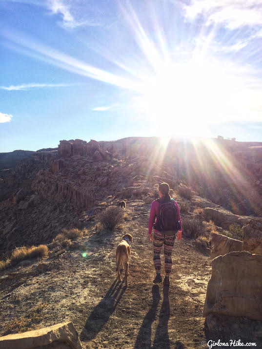 Hiking to the Rochester Panel & Molen Reef Petroglyphs