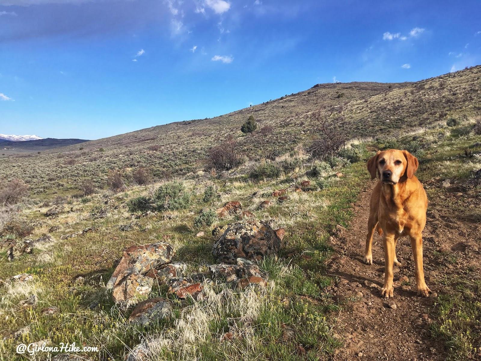 Hiking the Kamas Overlook Trail