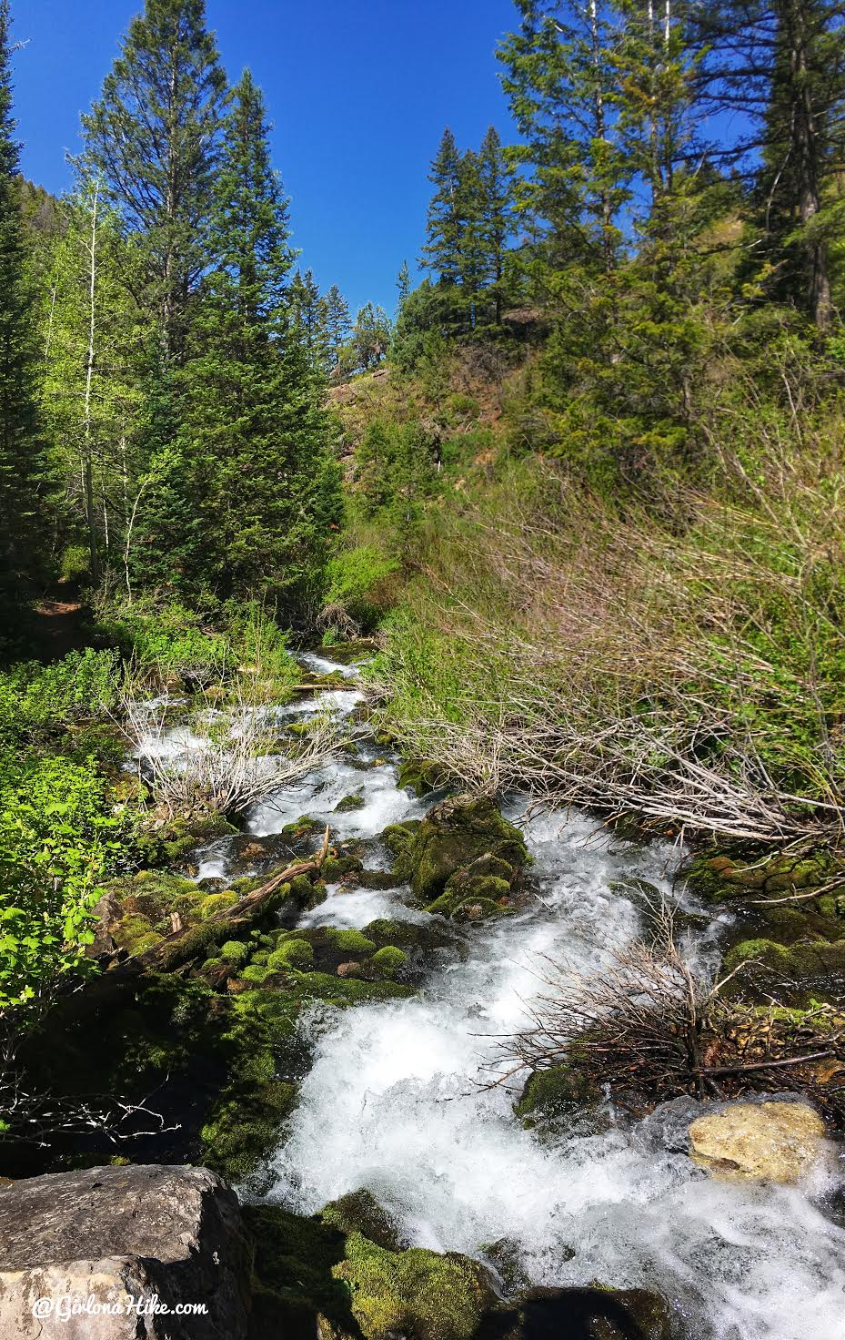 Hiking to Nobletts Creek, Uintas