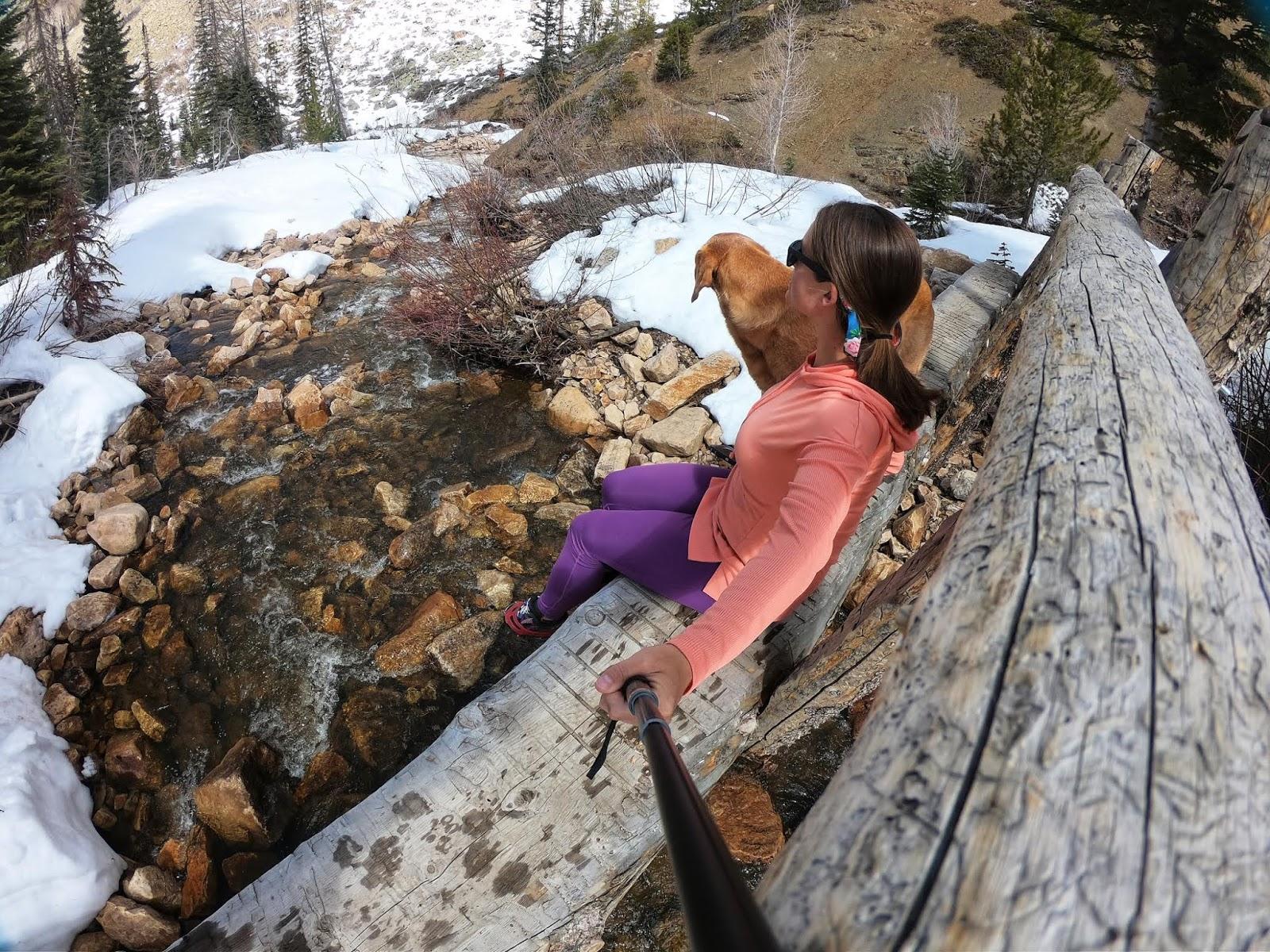 Backpacking the Shingle Creek Trail, Uintas, Backpacking in the Uintas, Backpacking with Dogs in Utah
