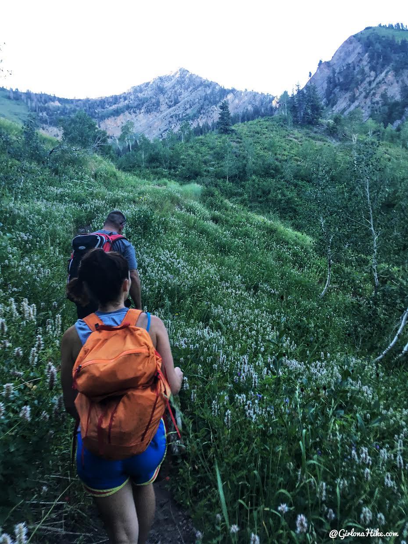 Hiking to Cascade Peak, Utah, Hiking the Wasatch 7 Peaks, Utah Peak Baggers, Wasatch Peak Baggers