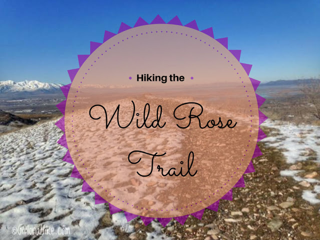 The Best 8 Trails in Salt Lake City For Visitors, Wild Rose Trail