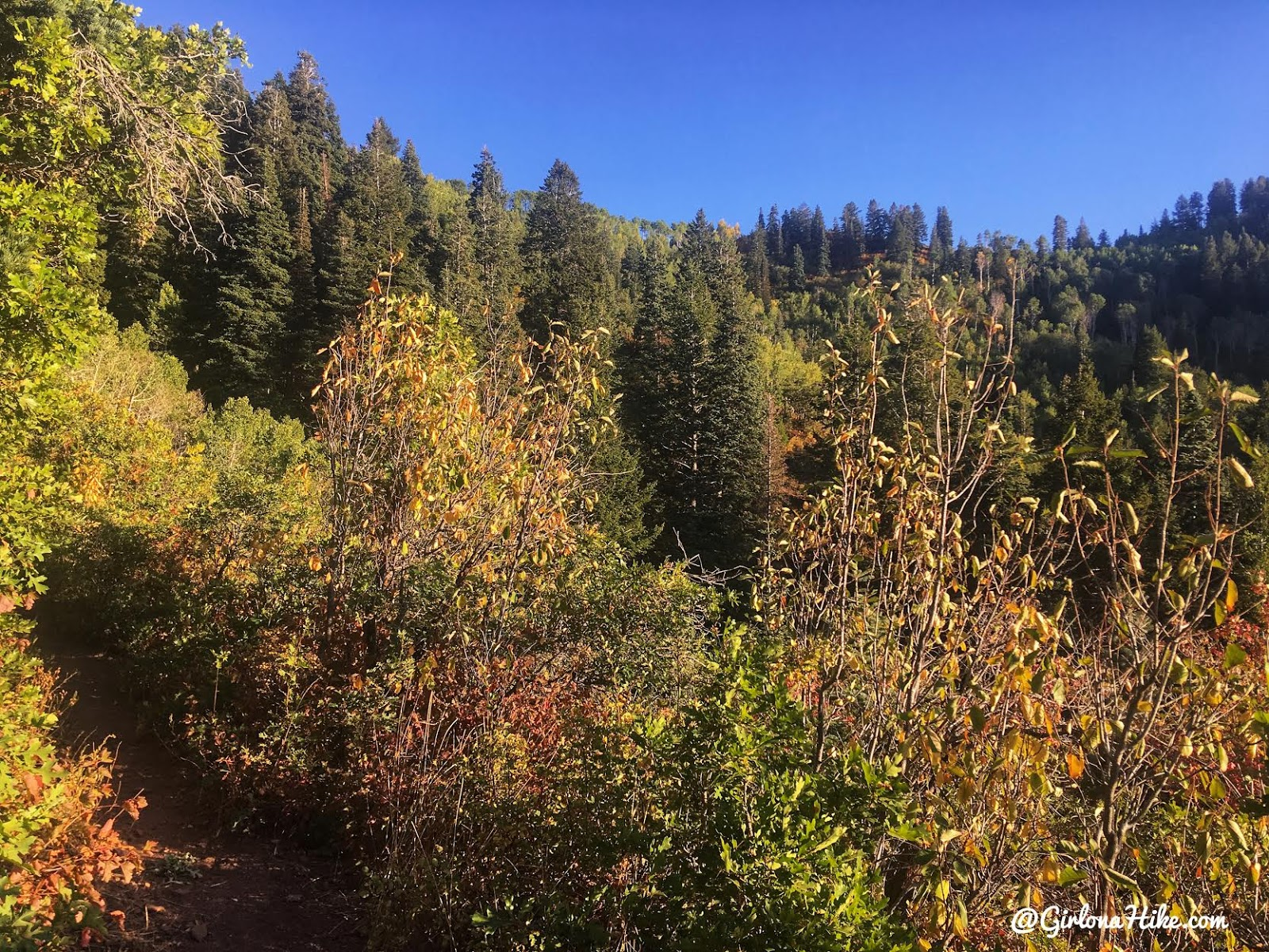 Hiking from Elbow Fork to Lamb's Canyon Pass