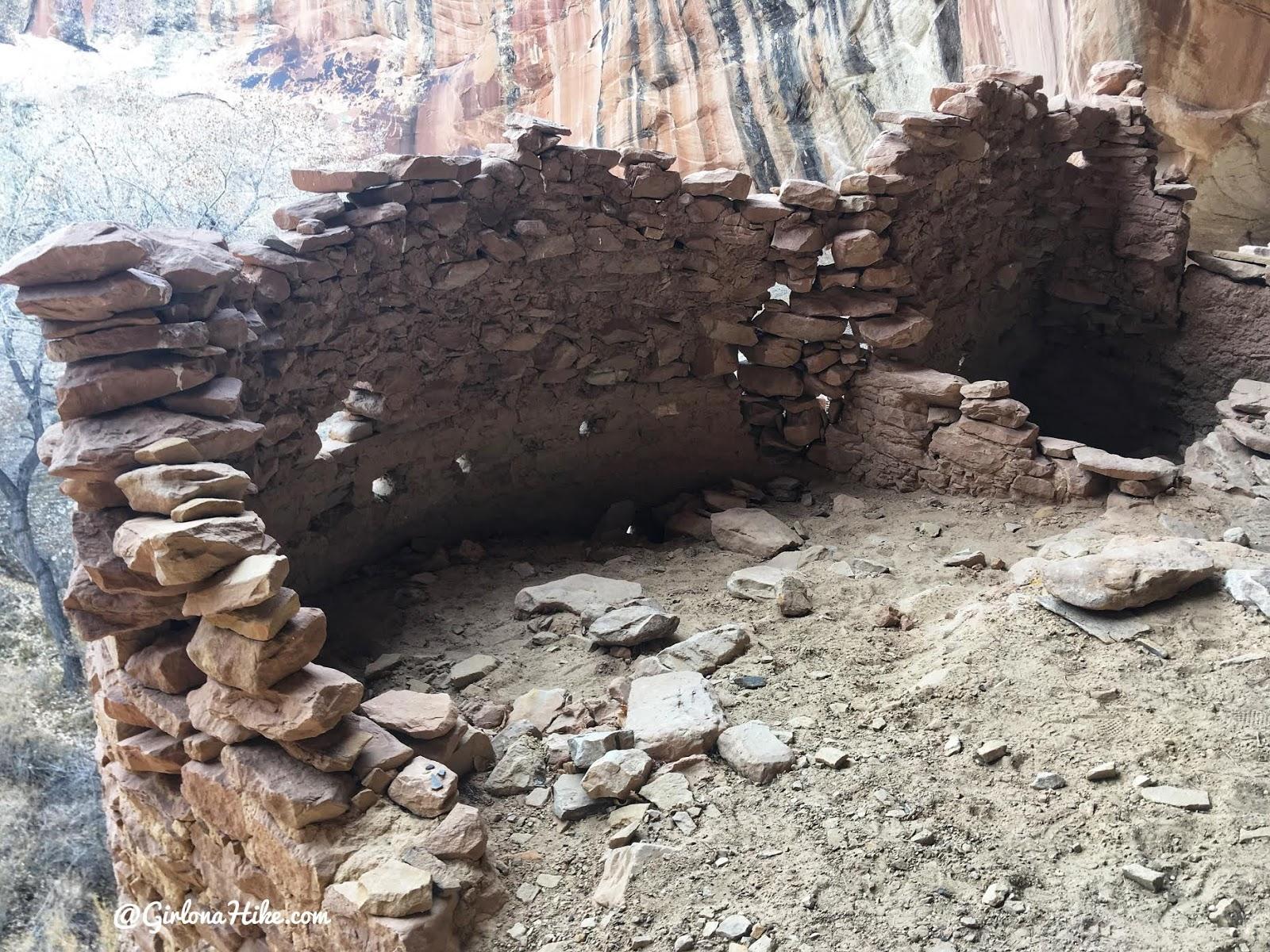 Exploring the Comb Ridge Canyons & Ruins, Cedar Mesa, Butler Wash, Monarch Cave Ruins