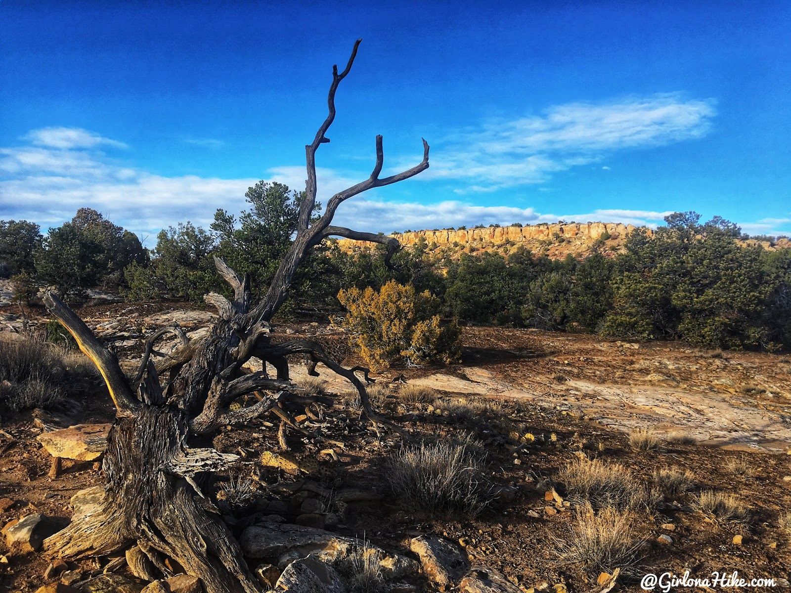 Hiking to the Butler Wash Ruins, Cedar Mesa