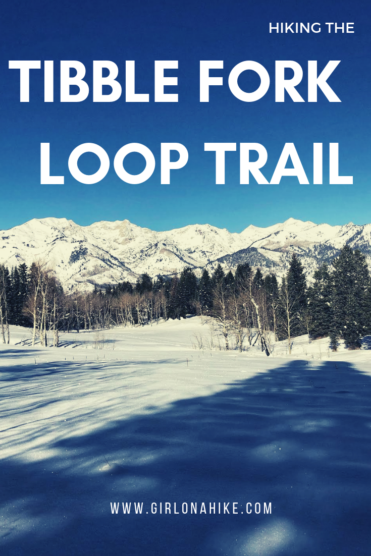 Hiking the Tibble Fork Loop Trail, American Fork Canyon