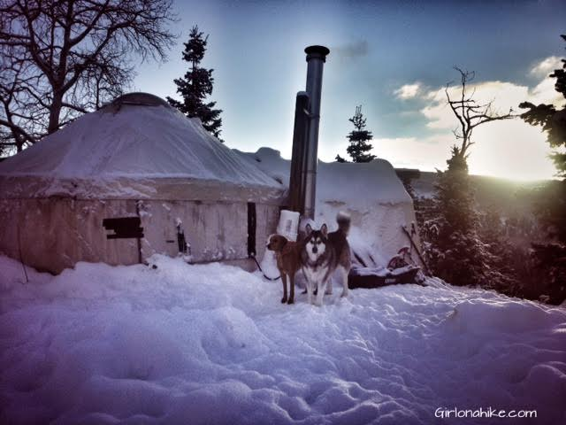 Norway Flats Yurt/TUNA Yurt, Uintas