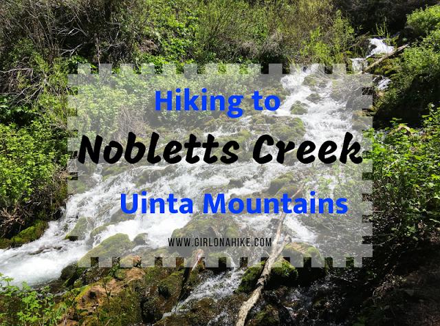 Hiking to Nobletts Creek, Uintas