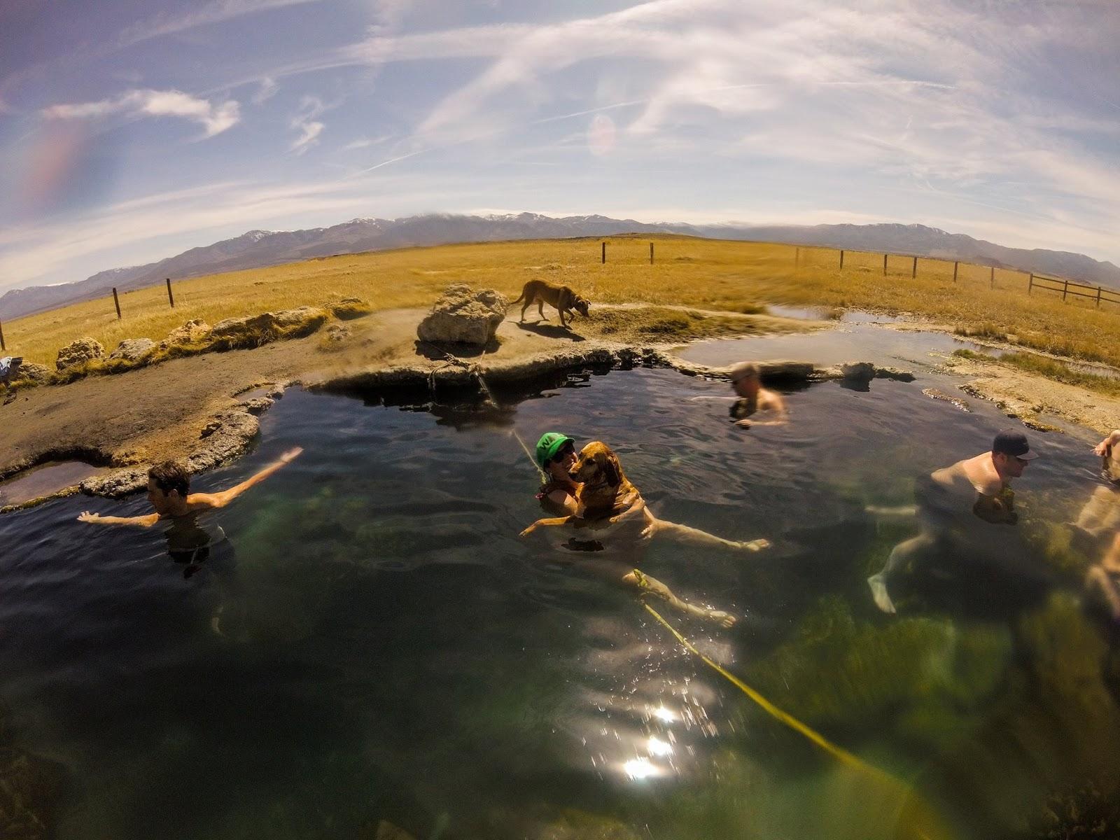 Meadow Hot Springs, Utah, Hot Springs in Utah, Dog friendly Hot Springs