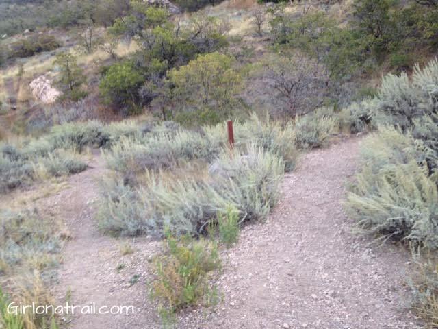 Malan's Peak trail