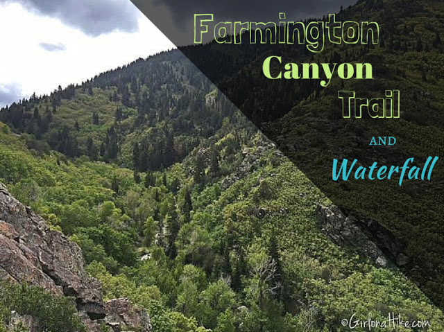 The Best Dog Friendly Waterfalls Hikes in Utah, Farmington Canyon Waterfall
