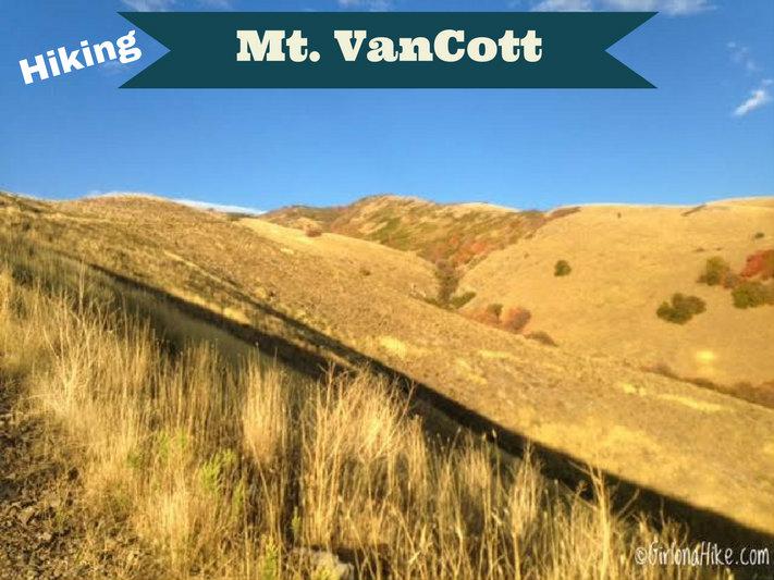 Hiking Mt. Van Cott, Hiking in Utah with Dogs